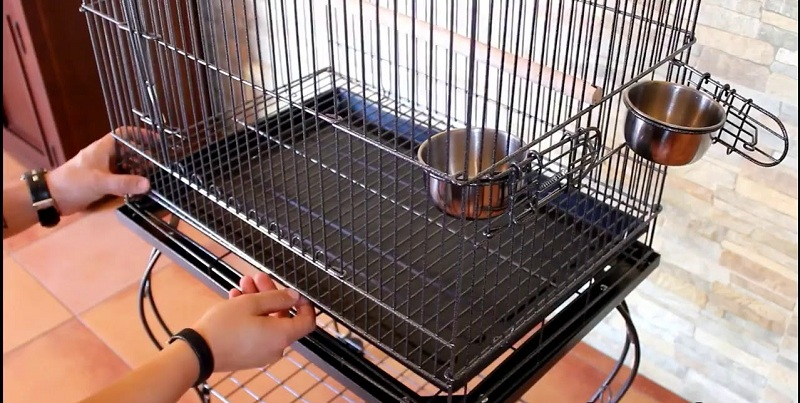 limpiar jaula para pájaros