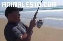 Pesca por accidente una Mantarraya