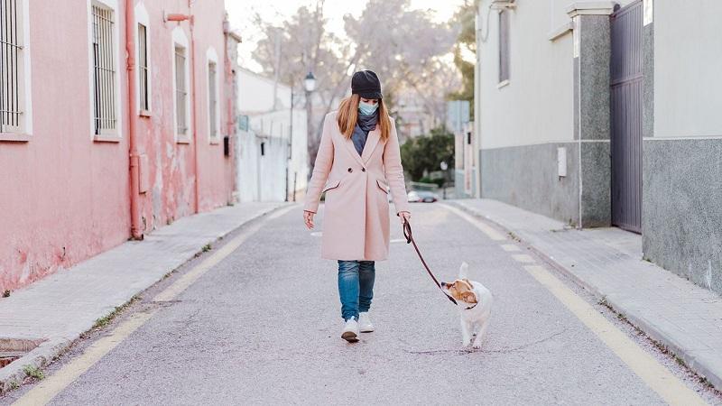 pasear a tu perro en tiempo de cuarentena