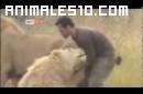 El hombre leon. Increible