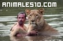 Uno mas entre leones